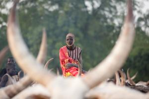 Dinka Language School Tour Packages