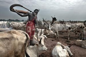 Mundari Villages Safari Tour